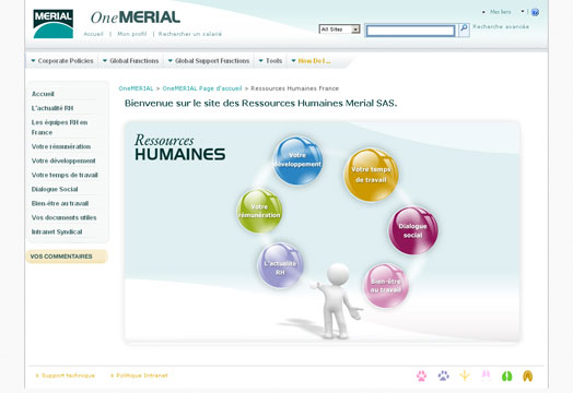 design site intranet merial